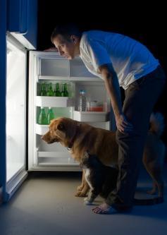 frigorifero ecologico whirlpool