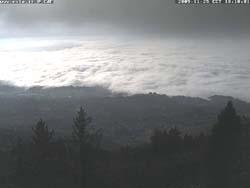 Varese nella nebbia