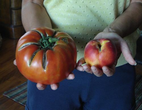 maxi pomodoro