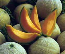Il melone mantovano