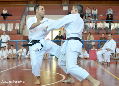 karate trofeo butoku varese 2011