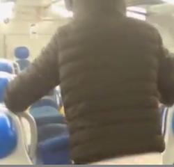 Scoperti i vandali del treno