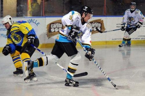 killer bees hockey varese