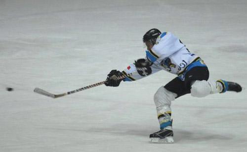 hockey killer bees varese