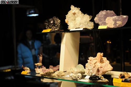 Fossili e Minerali in mostra a Ville Ponti