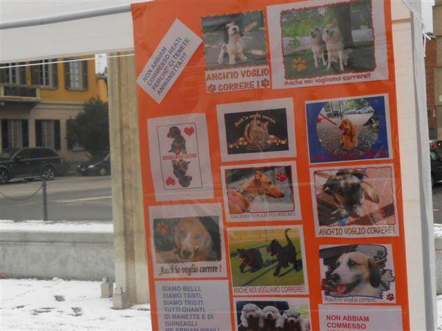 petizione angera area svago cani