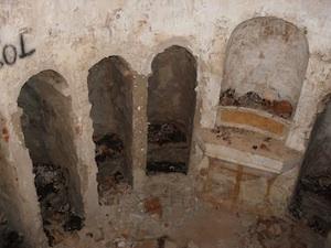 cripta azzio
