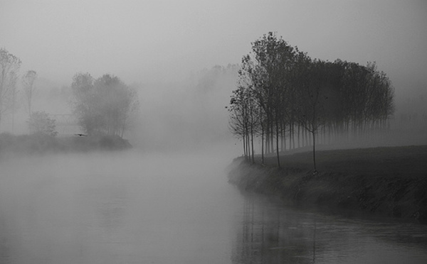 nebbia foto grande